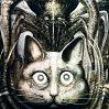 catmorbid