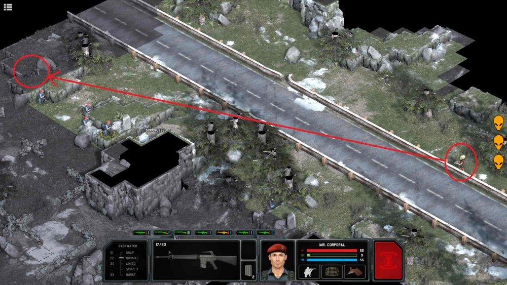 snipe.q30.jpg